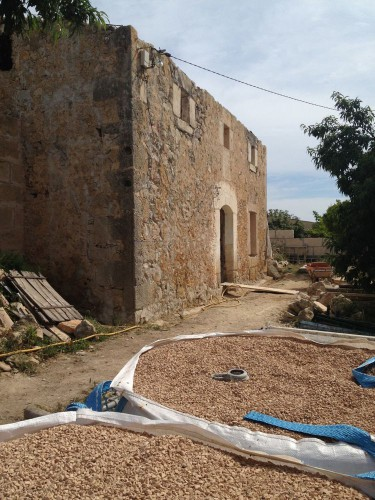 majorque, rehabilitation, tradition, construction en terre